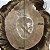 Prótese Capilar Skin (20 x 25 cm) #17 Loiro Médio + Curso de Auto Manutenção Grátis - Imagem 3