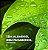 Puravida Desodorante Natural Roll-on Sem Perfume 55ml - Imagem 5