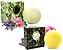 Derma Clean Kit Shampoo Sólido Limpeza Suave + Condicionador em Barra Hidratação Profunda - Imagem 1