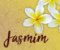 Pomander Sagrado Eau de Parfum Natural Jasmim 30ml - Imagem 5