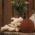 AhoAloe Shampoo Sólido Anti-Resíduos Aloe Vera e Pracaxi 100g - Imagem 3