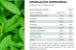 Puravida Zero - Adoçante Natural em Pó Sem Calorias 100g - Imagem 3