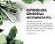 Puravida Natural Pure Shampoo Manuya Lemon 250ml - Imagem 5