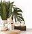 Blend Art Vela Vegetal Sweet Mornings - Laranja Doce e Cravo 140g - Imagem 7