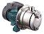 Motobomba Autoaspirante de Agua Lepono AJM45SL 0,6hp Monofasica 220v  - Imagem 1