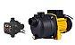 Pressurizador De Agua 1cv Autoaspirante Ferrari Jetp-100 127v + Controlador Tpc-58 - Imagem 1