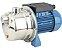 Bomba de Agua Dancor Autoaspirante Ai-2 1/2cv Monofasico 110/220v Inox Ip44 - Imagem 1
