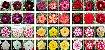 MIX com 5 sementes de flores simples, dobradas e triplas - Mr. Ko - Imagem 1