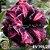 Muda Rosa do Deserto de enxerto com flor tripla na cor Roxa Matizada- EV146/21 - Imagem 1