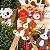 Mini Cachepot Cachorrinhos | 2 unidades - Imagem 2