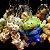 Chaveiro balde de pipoca Mickey, Et, Pato Donald, Dumbo, Stitch, Sr Cabeça de Batata ou Minnie - Imagem 7