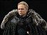Brienne of Tarth Game of Thrones Threezero Original - Imagem 1