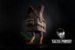 House Baba Yaga - Imagem 3