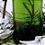 TINTURA DE ERVAS - MEDIUNIDADE :: ENERGIZANTE - Imagem 2