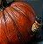 Pumpkin - Mutant Plants Collection - Imagem 4