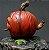 Pumpkin - Mutant Plants Collection - Imagem 3
