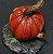 Pumpkin - Mutant Plants Collection - Imagem 2