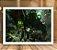 Poster com Moldura - League of Legends LoL Warwick - Imagem 2