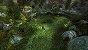 Jogo Brave: The Videogame - PS3 - Imagem 4