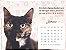 Pacote 10 calendários com frete grátis - Imagem 1
