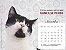 Pacote 10 calendários com frete grátis - Imagem 3
