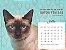 Pacote 10 calendários com frete grátis - Imagem 2