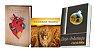 Combo: A Dracma Perdida + Eleição e Predestinação à Luz da Bíblia + CD - Imagem 1