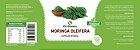 Moringa Oleifera 120 caps 100% Natural - Imagem 2