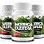 Kit com 3 Moringa Oleifera 180 caps 100% Natural - Nutrivale - Imagem 1