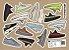 ANTI FUGAZZI - Cartela de Adesivos Yeezy -NOVO- - Imagem 1