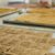 Curso de Desidratados - frutas & legumes - crackers - barrinha de cereais - granolas - Imagem 7