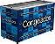 Congelador Conservador 503 Litros ICED 503 V - Fricon - Imagem 1