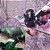 Alicate de Enxerto - Ferramenta agronomia Profissional Enxertia - Imagem 3