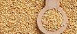 Amaranto em Grãos 500 grs - Imagem 1