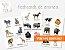 Flashcards de Animais para pareamento Montessori - Imagem 1
