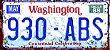Placa Decorativa Washington 15x30 - Imagem 1