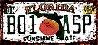 Placa Decorativa Florida 15x30 - Imagem 1