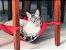 Rede de Cadeira para Gatos Cinza/Rosa - Imagem 3