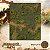 Selva alagada - Imagem 1