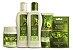 Bio Extratus Abacate Pós-Química Kit Completo Consumidor (5 Produtos) - Imagem 1