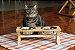 Comedouro Picnic | Para gatos - Imagem 6