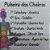Pulseira 7 Ckakras Pedra Vulcanica - Imagem 2