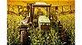 Climatizador Agrícola Resfriagro 12V ou 24V - Imagem 3