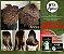 BTX ORGANIC 1KG + BRINDE PERFUME INTENSE BRILHO - Imagem 5