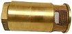"""Válvula de Pé - 2"""" - Imagem 3"""