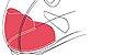 Sapatilha Northwave Jet Evo Road Speed Branca - Imagem 2