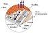 Manta térmica Subcobertura Duas Faces Multi/2 - 50m² - Duralfoil - Imagem 2
