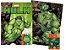 Marvel Kit Diversao - HULK - Imagem 1