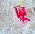 Calcinha Fio Dental String em Renda Secret - Imagem 8