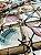 Tecido Jacquard náutico conchas bege - Imagem 3